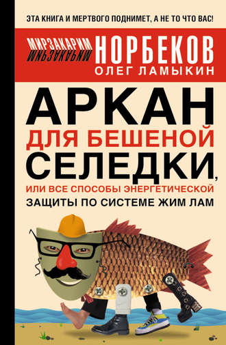 Мирзакарим Норбеков, Олег Ламыкин, Аркан для бешеной селедки, или Все способы энергетической защиты по системе Жим Лам