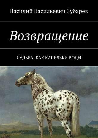 Василий Зубарев, Возвращение. Судьба, как капельки воды