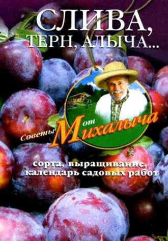 Николай Звонарев, Слива, терн, алыча… Сорта, выращивание, календарь садовых работ