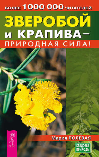 Мария Полевая, Зверобой и крапива – природная сила!