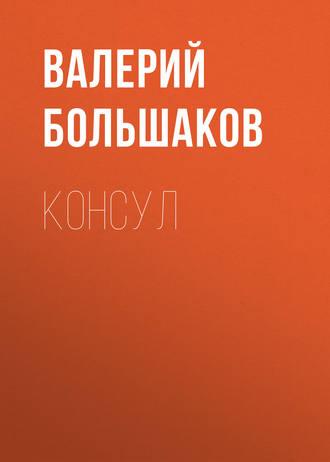 Валерий Большаков, Консул
