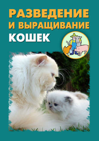 Илья Мельников, Александр Ханников, Разведение и выращивание кошек