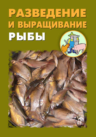 Илья Мельников, Александр Ханников, Разведение и выращивание рыбы