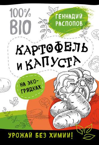 Геннадий Распопов, Картофель и капуста на эко грядках. Урожай без химии