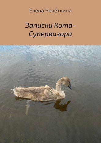 Елена Чечёткина, Записки Кота-Супервизора