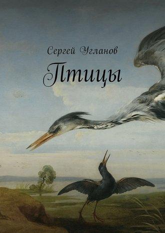 Сергей Угланов, Птицы. Фантастический рассказ