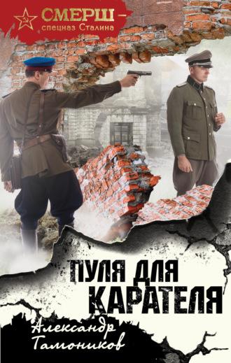 Александр Тамоников, Пуля для карателя