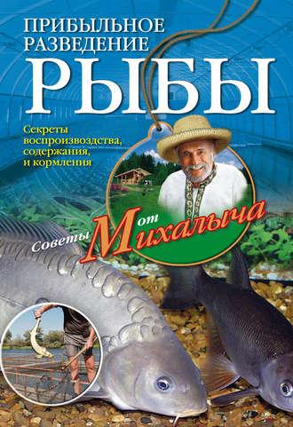 Николай Звонарев, Прибыльное разведение рыбы
