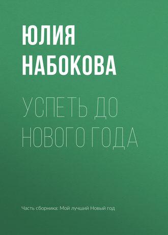 Юлия Набокова, Успеть до Нового года