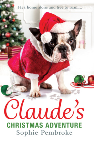 Claude's Christmas Adventure: The must-read Christmas dog book of 2018!