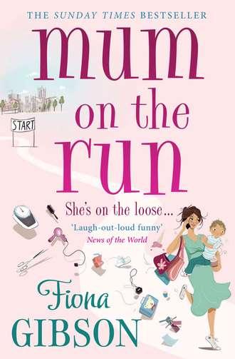 Fiona Gibson, Mum On The Run