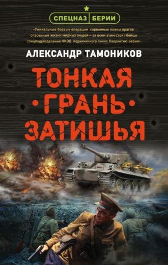 Александр Тамоников, Тонкая грань затишья