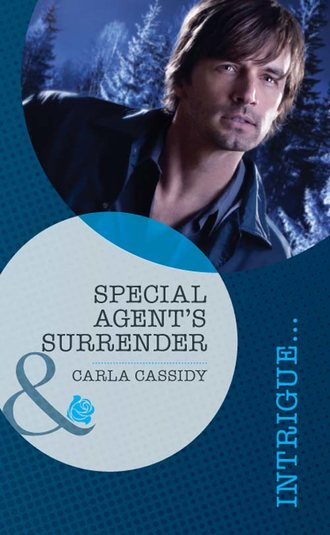 Carla Cassidy, Special Agent's Surrender