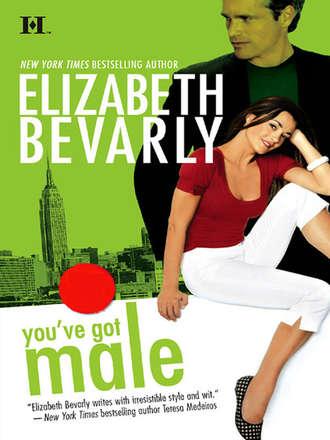 Elizabeth Bevarly, You've Got Male
