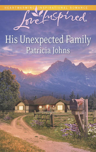 Patricia Johns, His Unexpected Family