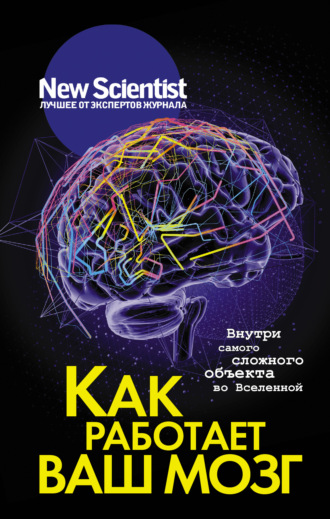 Сборник, Как работает ваш мозг. Внутри самого сложного объекта во Вселенной