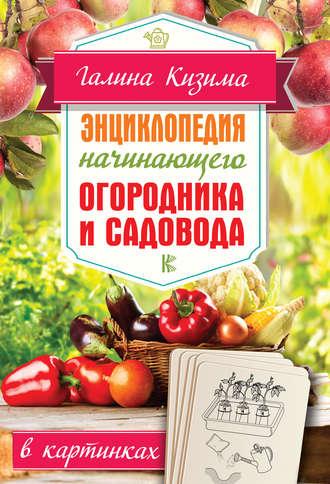 Галина Кизима, Энциклопедия начинающего огородника и садовода в картинках