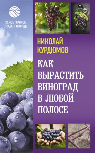 Николай Курдюмов, Виноградные секреты для любого климата