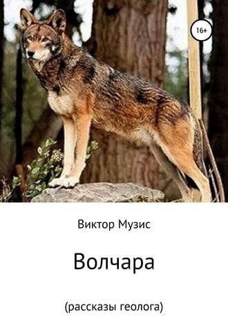 Виктор Музис, Волчара