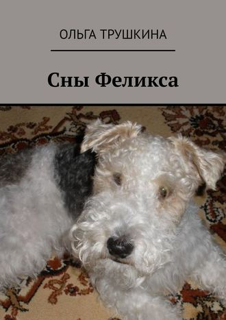 Ольга Трушкина, Сны Феликса