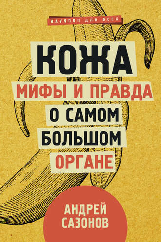 Андрей Сазонов, Кожа: мифы и правда о самом большом органе