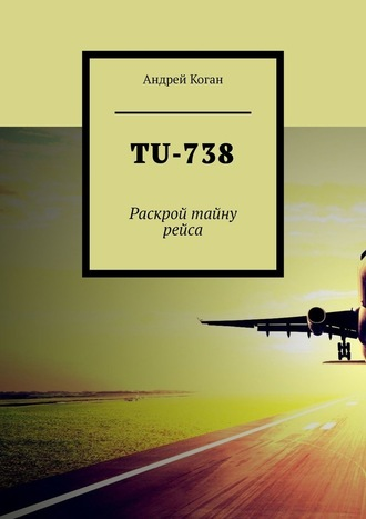 Андрей Коган, TU-738. Раскрой тайну рейса
