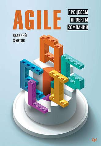 Валерий Фунтов, Agile. Процессы, проекты, компании