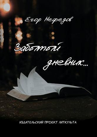 Егор Нефедов, Забытый дневник…