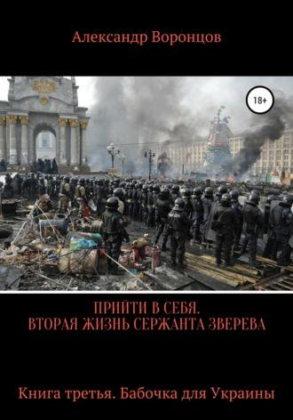 Александр Воронцов, Прийти в себя. Вторая жизнь сержанта Зверева. Книга третья