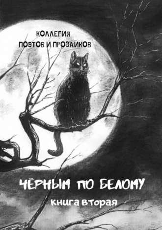Эльвира Шабаева, Черным побелому. Книга вторая