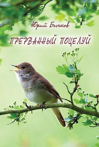 Юрий Бычков, Прерванный поцелуй