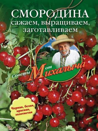 Николай Звонарев, Смородина. Сажаем, выращиваем, заготавливаем