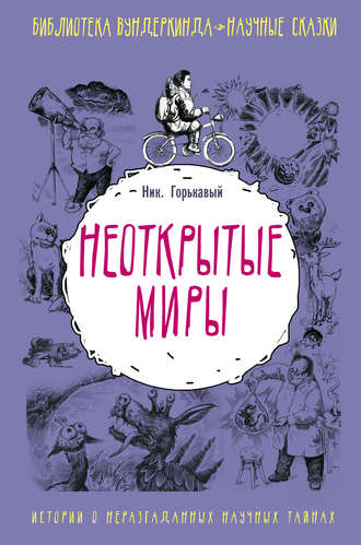 Николай Горькавый, Неоткрытые миры
